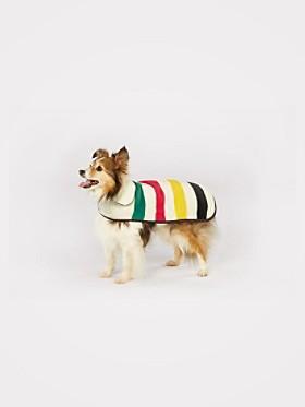 Small National Park Dog Coat