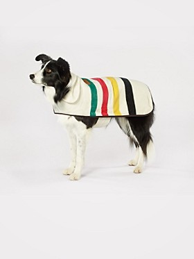 Large National Park Dog Coat