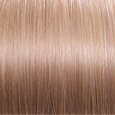 Euronext premium remy 14 inch clip in human hair extensions light euronext premium remy 14 inch clip in human hair extensions light blonde pmusecretfo Choice Image
