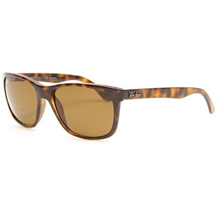 Ray Ban RB4181 Polarized