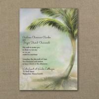 Translucent Tropics