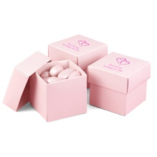 Pink Favor Boxes (2-Piece)