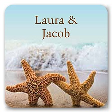 Starfish - Jumbo Seal