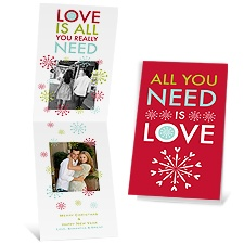 All You Need - Barn Red - Photo Holiday Card