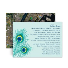 Peacock Close-Up - Aqua - Map Card