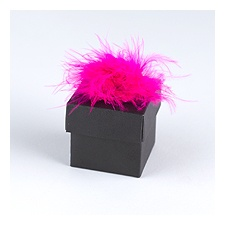 Hot Pink Feather Accents