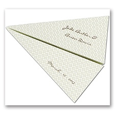 Perforated Airplane Save The Date