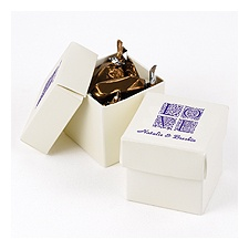 Ivory Shimmer Two-Piece Favor Boxes