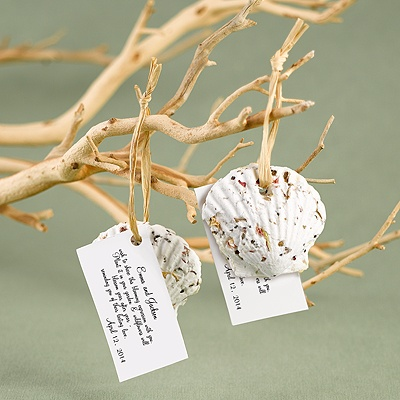 Plant A Seashell Favors