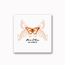 Delicate Butterfly - Orange - White Cocktail Napkin