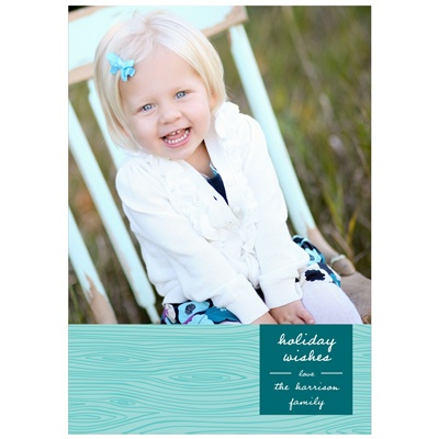Rustic Panel in Aqua -- Photo Christmas Cards