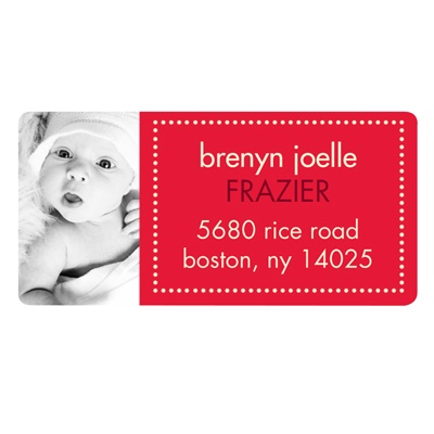 Adorable Photo, Adorable Dots Christmas Address Labels