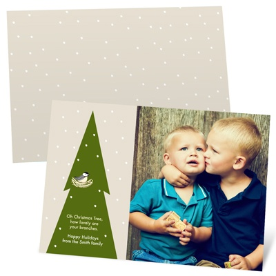Falling Flakes Photo Christmas Cards