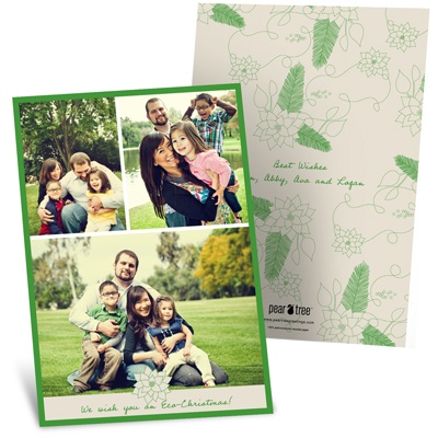 Poinsettia Connection Holiday Photo Cards