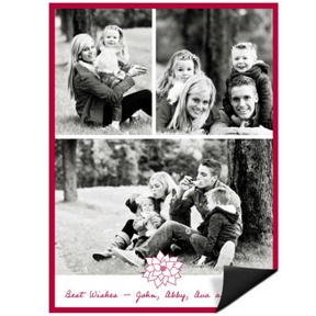 Poinsettia Connection Magnet -- Christmas Cards