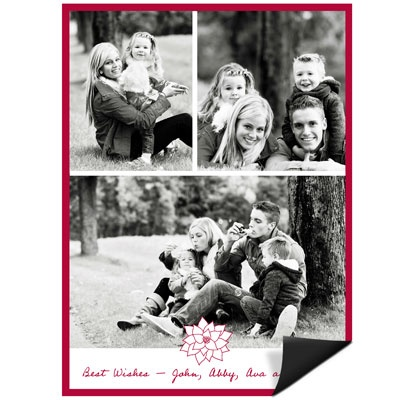 Poinsettia Connection Magnet Photo Christmas Cards
