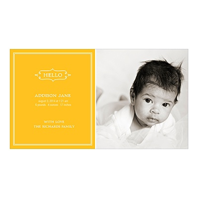 Elegant Greeting for a Girl -- Baby Photo Birth Announcements