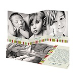 Photo Blocks and Stripes -- Trifold Holiday Cards