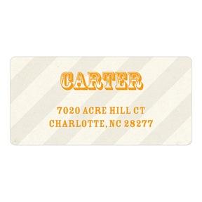 Subtle Stripes -- Birthday Address Labels