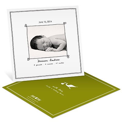 Special Delivery -- Boy Photo Stork Birth Announcements