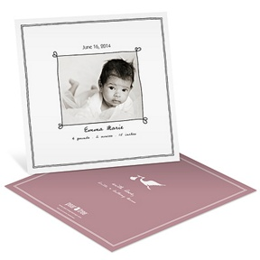Special Delivery Girl -- Birth Announcements