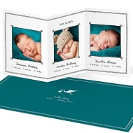 Special Delivery Triplets Multiples Announcements