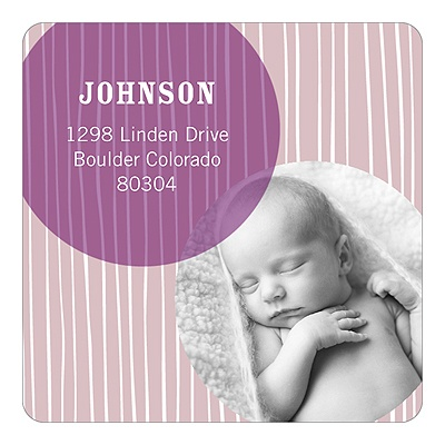 Winter Delivery for Baby Girls -- Personalized Photo Address Labels