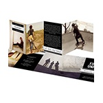Love Story -- Wedding Save the Date Photo Cards