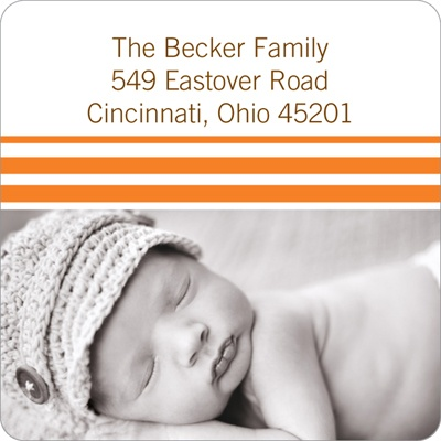 Varying Stripes Baby Address Labels
