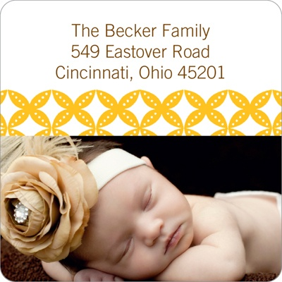 Diamond Border Baby Address Labels