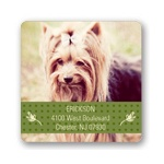Classic Banner -- Photo Address Labels