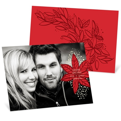 Fresh Poinsettia Photo Christmas Cards