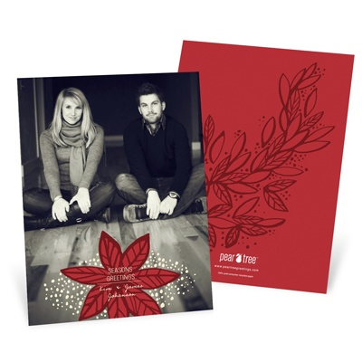 Fresh Poinsettia Vertical Photo Christmas Cards