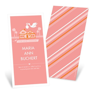 Special Delivery in the Country in Pink -- Girl Birth Announcements