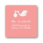 Special Delivery in Pink -- Baby Address Labels