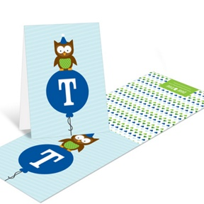 Blue Party Owl -- Thank You Cards