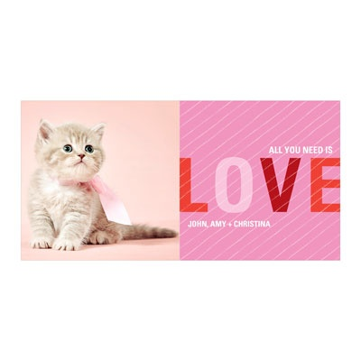 Striped Love Horizontal Photo Paper Valentine's Day Photo Cards