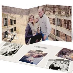 Photogenic Year -- New Year's Photo Cards