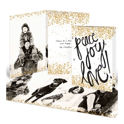 Sprinkled With Gold Holiday Photo Cards