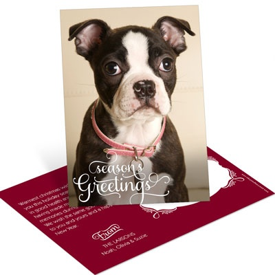 Greetings From Us Vertical Postcard Photo Christmas Cards