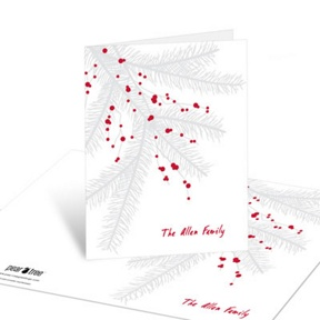 Branch With Berries -- Christmas Thank You Cards