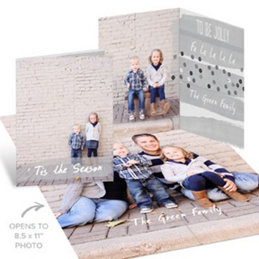 Gray Sequin-Look Poster -- Christmas Cards