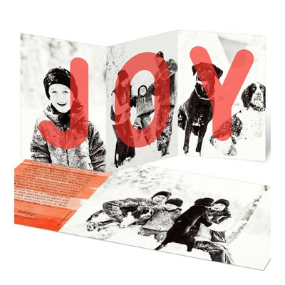 Joy Full Photo Christmas Cards