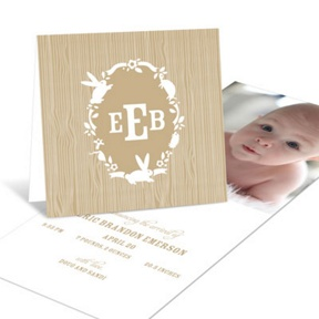 Little Critters Boy -- Birth Announcements