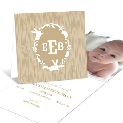 Little Critters Boy Birth Announcements