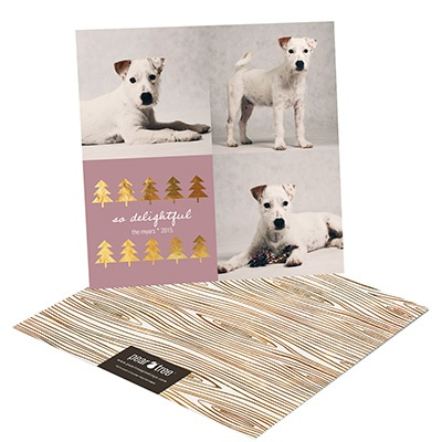 Pet Collage Photo Christmas Cards