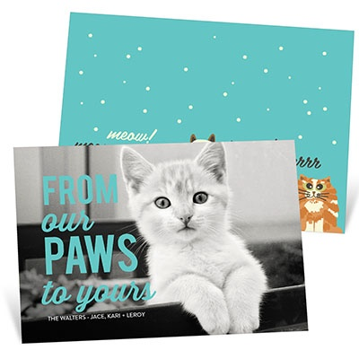 Meowy Christmas Holiday Photo Cards