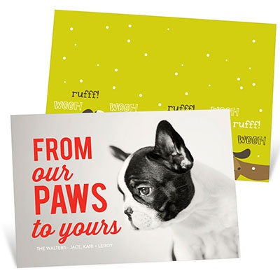Pet Talk Holiday Photo Cards
