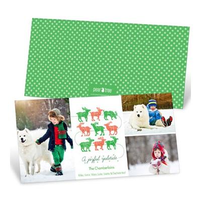 Reindeer Lineup With Photos Photo Christmas Cards