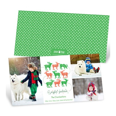 Reindeer Lineup With Photos Holiday Photo Cards